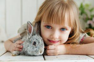 konijnen benodigdheden